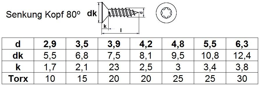 250 Senkkopf Torx Blechschrauben DIN 7982 verzinkt 6,3x19 CTX