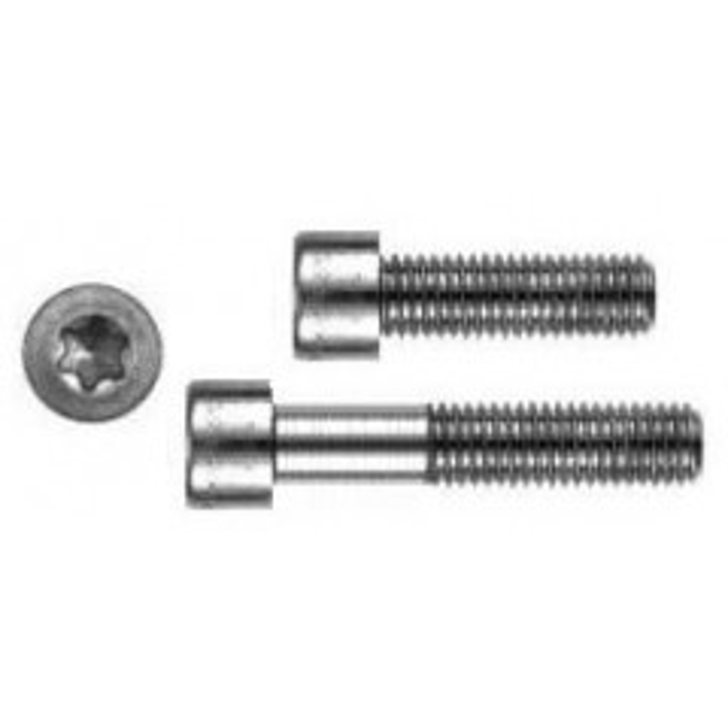 ISO 14580 A2 M 6X35 TX30 Zylinderkopf TORX DIN 14580 A2 20 Stk