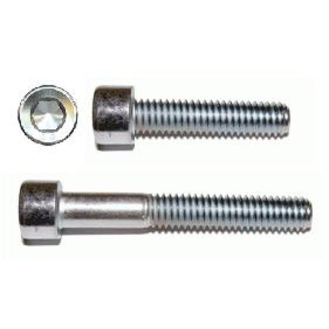 100 Stück Zylinderschrauben DIN 912-A4-80 m.Innensechskant  M 8x 55